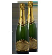 coffret 2 bouteilles de champagne